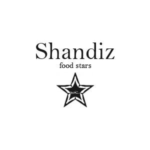 طراحی وب سایت ستارگان شاندیز